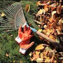 MA Home Insurance Tips to Prep Your Home for the Fall Season
